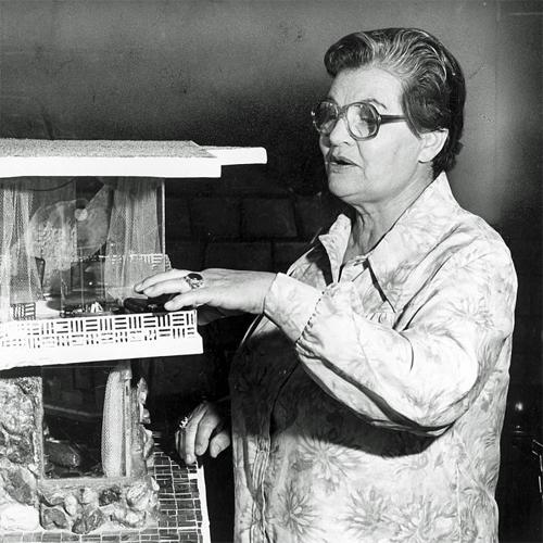 Frances Gabe pointing to model of her self-cleaning house, 1979